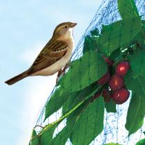 Ochranné siete proti vtákom a krupobitiu