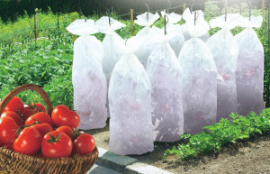 Hlavný obraz produktu Tomatex záhradkárska textilia