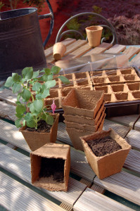Hlavný obraz produktu Nortene Growing Kit mini skleník