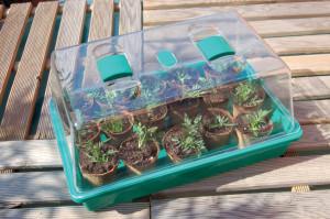 Hlavný obraz produktu Rapid Grow mini skleník