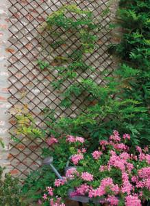 Hlavný obraz produktu Nortene Willow Trellis pletená mriežka hnedá 0,5x,1,5m