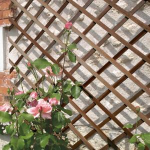 Hlavný obraz produktu Nortene Trelliwood mriežka farba borovica 1x3m