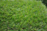 Umelá tráva Salzburg 1x4m, 20mm