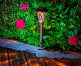Záhradná solárna lampa Eden