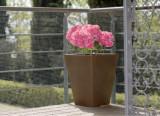 Hlavný obraz produktu Plastová sieť do záhrady Balconet  0,5x25m