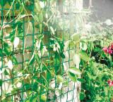 Plastová mriežka do záhrady Climbanet 0,5x25m