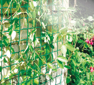Hlavný obraz produktu Plastová mriežka do záhrady Climbanet 0,5x25m