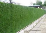 Nortene Campovert umely plot 2x3m