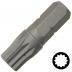 10 mm XZN csavarhúzó bit 10 mm meghajtóval, 30 mm (10 db)