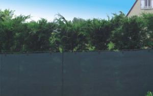 Extranet 2,0x50 m zöld árnyékolóháló termék fő termékképe